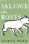 SalvageTheBones